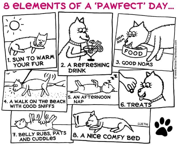 Minnie The Westie - west highland terrier dog cartoons