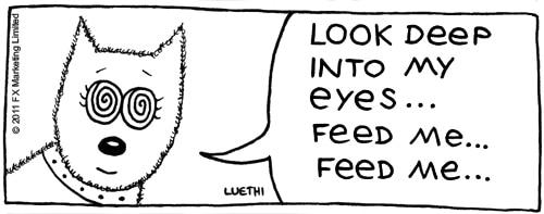 "Hypnotise-eyes... ""look deep into my eyes... feed me... feed me..."""
