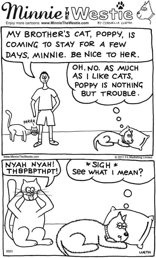 Minnie The Westie cartoon