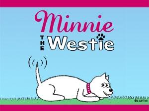 Minnie The Westie computer wallpaper