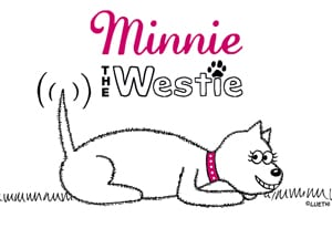 Minnie The Westie computer wallpaper - plain design