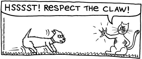 Got a cat already? Westies will learn to 'respect the claw' very quickly!
