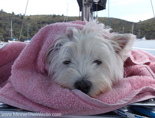 Naturally, my beach towel is pink. :) I look very snug and cosy eh!