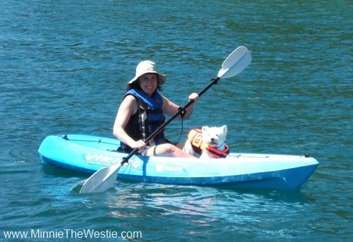 I am getting more confident as a kayaking dog!