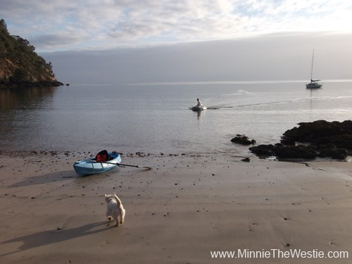 Dad joins Mum and I on the beach... he's arriving in the dinghy.