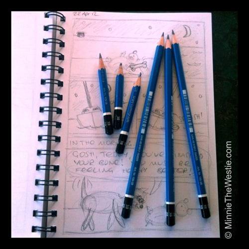 3 old pencils and 3 new pencils for cartooning!