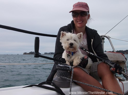 All too soon it was time to go home: holibobs are never long enough. Here I am on mum's lap while she's steering the boat. If you look carefully, I am so content that my eyes are closed and my tongue is poking out! I was like this for ages, I was totally blissed out!