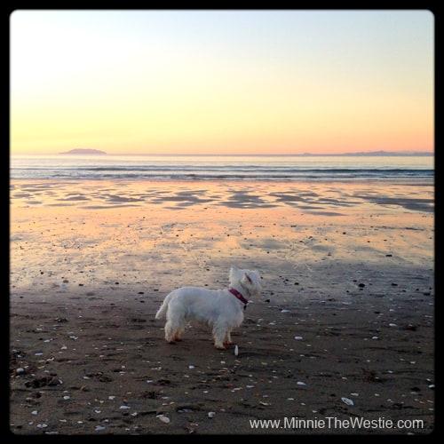Ahhh, what a beautiful sunset on Onetangi Beach!