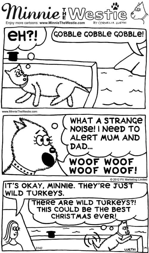 Minnie The Westie cartoon: Christmas turkey